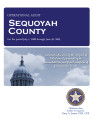 SEQUOYAH COUNTY OPERATIONAL AUDIT FOR THE PERIOD JULY 1, 2008 THROUGH JUNE 30, 2009