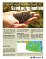seed_germination 1