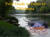 Field Guide to Fishes ocr 1