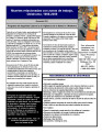 WR_Work_Zone_Safety_Sheet_Spanish_2...