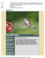 May 2014 Wild Side E-Newsletter 1