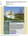 June 2014 Wild Side E-Newsletter 1
