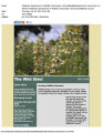 July 2014 Wild Side E-Newsletter 1